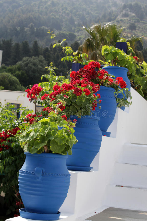 Zia. Kos Island, Greece. White stairs decorated with red flowers in blue pots Zia Island of Kos Greece royalty free stock photos