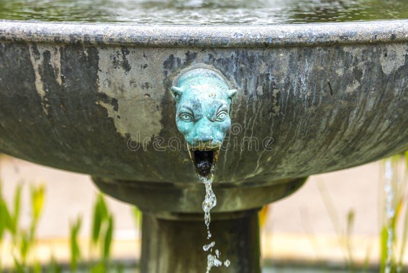 Zibet-Hauptbrunnen stockfoto