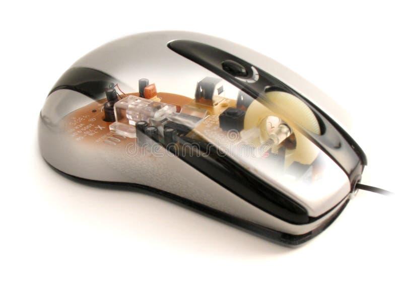 Zie door muis stock afbeeldingen