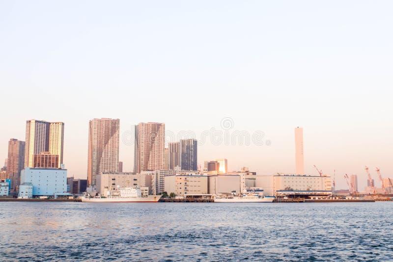 Zie Mening van het gezichtspunt van de sumidarivier boot in Tokyo zien royalty-vrije stock fotografie