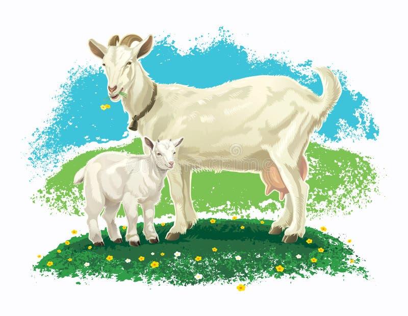 Ziege mit Kind auf einer Wiese stock abbildung