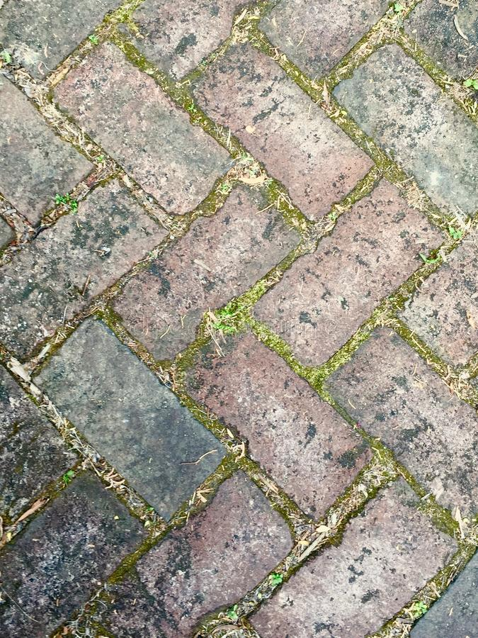 Ziegelstein-Gehweg lizenzfreies stockbild