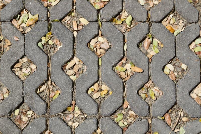 Ziegelsteinbürgersteig mit Blättern stockfotografie