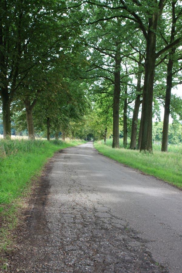 Ziehen Sie sich (Heeze) und seine Umgebungen in den Niederlanden zurück stockfotos