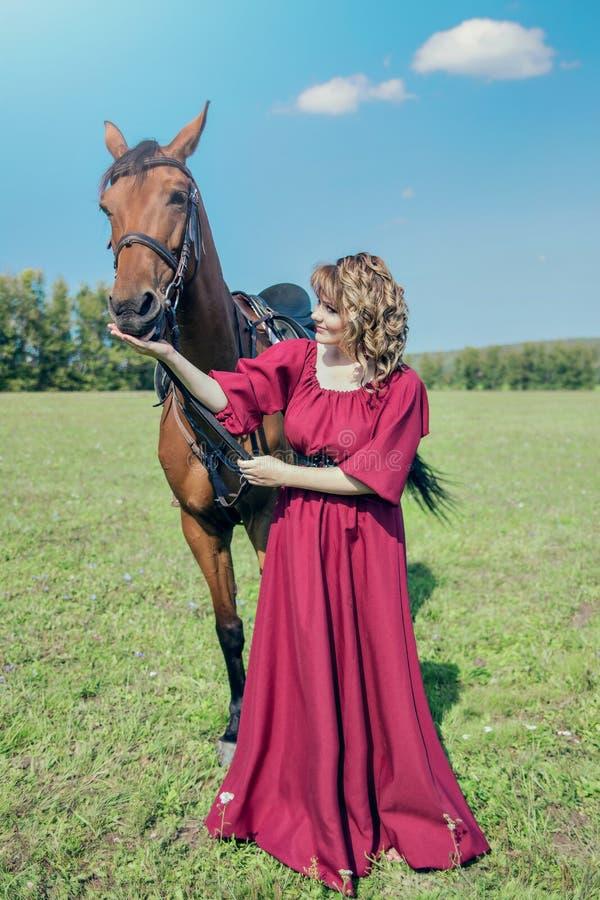 Zieht das Pferd von der Hand ein stockbilder
