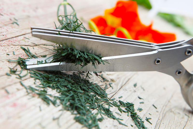 Zielarscy nożyce cią koperu zdjęcia stock