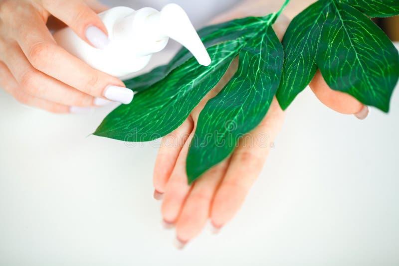 zielarska medycyna Naukowiec, dermatolog Robi Organicznie Nat fotografia stock