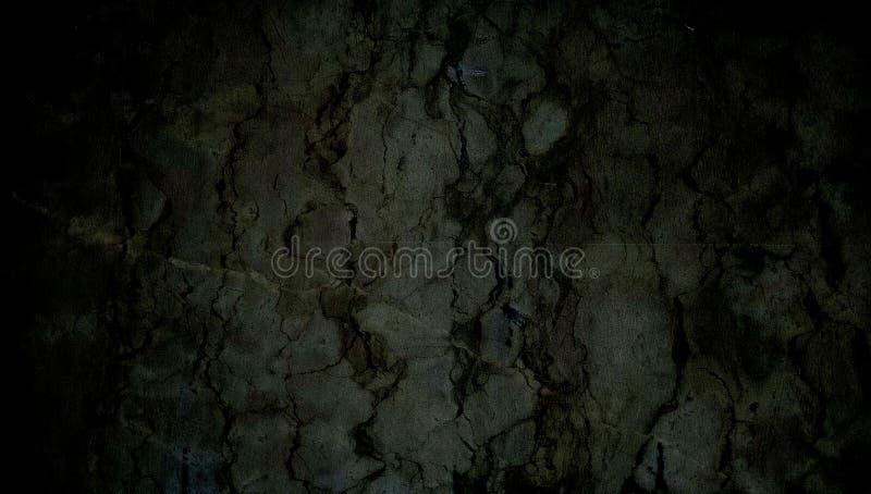 Zieleń i czerń cieniąca grunge ściana textured tło ilustracji