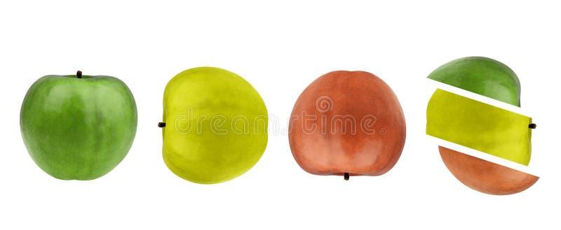 Zieleń, kolor żółty, czerwoni jabłko, cały, i plasterki. obraz stock