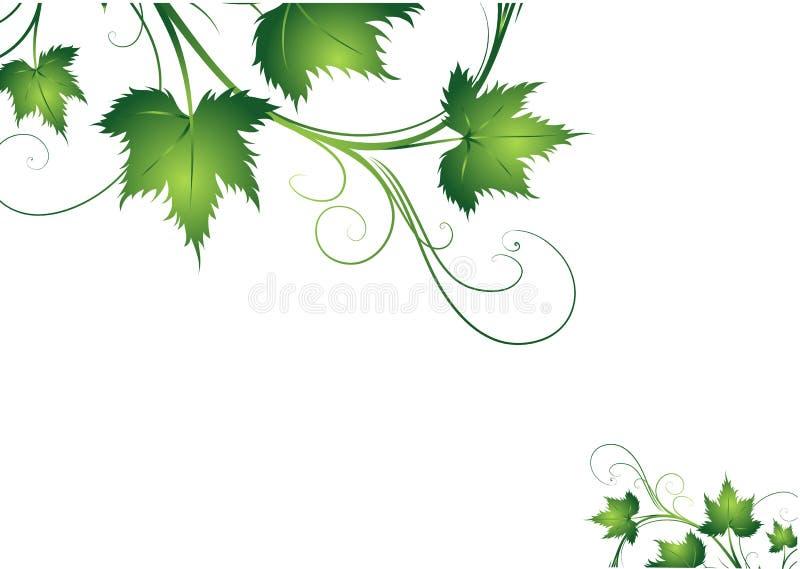 zieleń liść royalty ilustracja