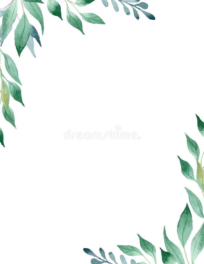 Zieleń liści akwareli raster ramy ręka rysujący szablon royalty ilustracja