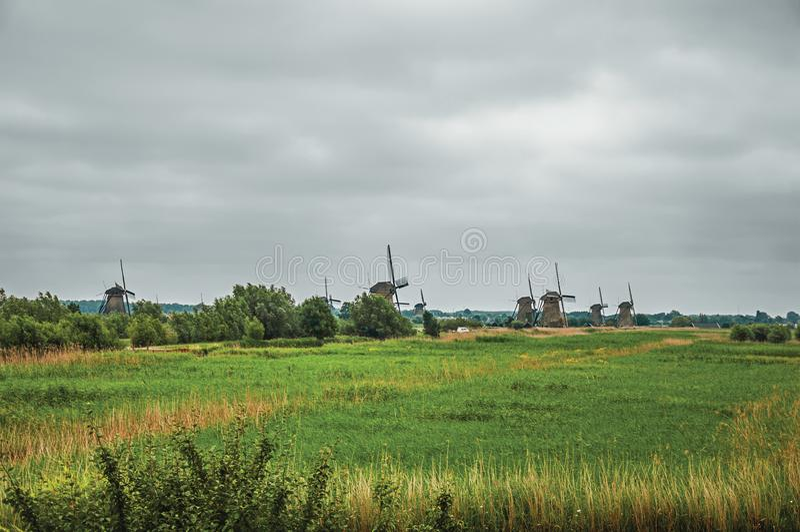 Zieleń wiatraczki na horyzoncie w chmurnym dniu przy Kinderdijk i pola obraz royalty free