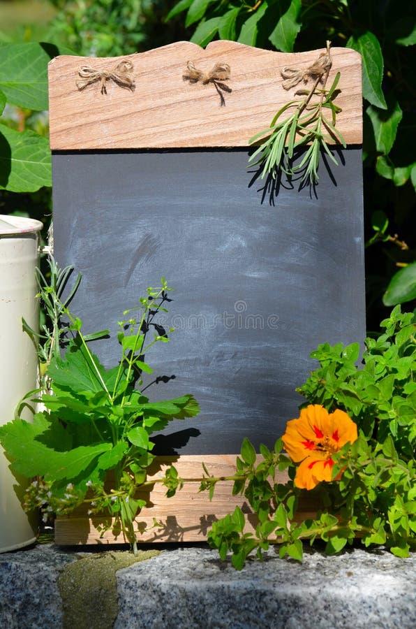 ziele świeże witaminy obraz stock