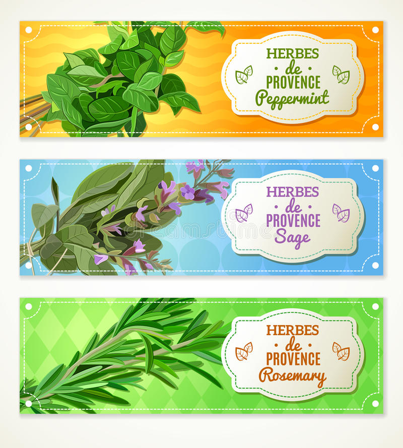 Ziele de Provence sztandary ilustracji