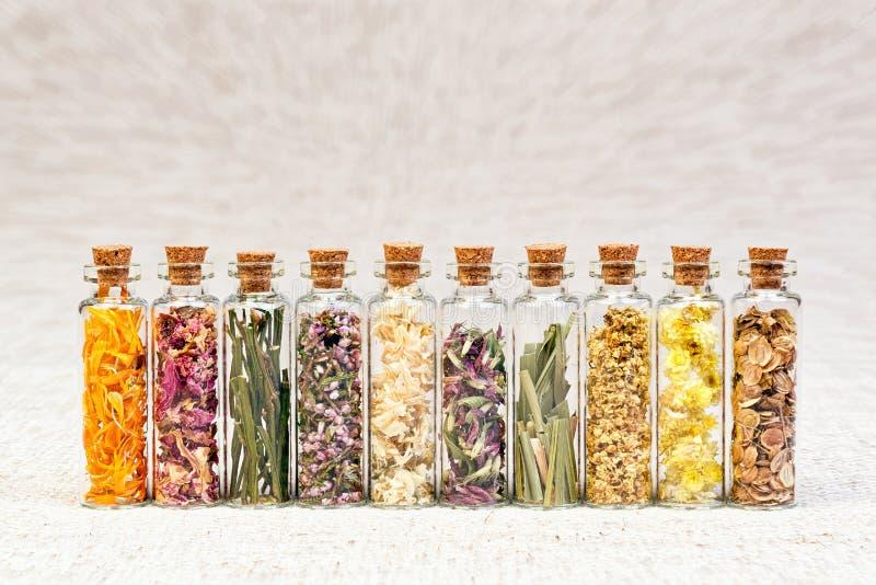 Ziele dla homeopatycznego use obraz stock