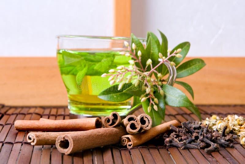 ziele herbaciani zdjęcie royalty free