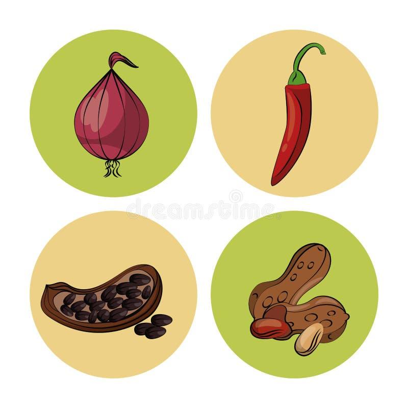 ziele i pikantność ikony ilustracja wektor