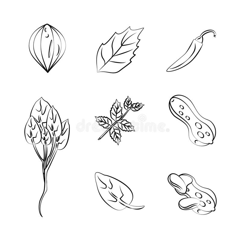 ziele i pikantność ikony royalty ilustracja