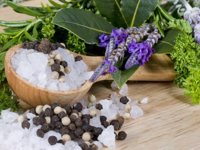 ziele pieprzu sól zdjęcie stock