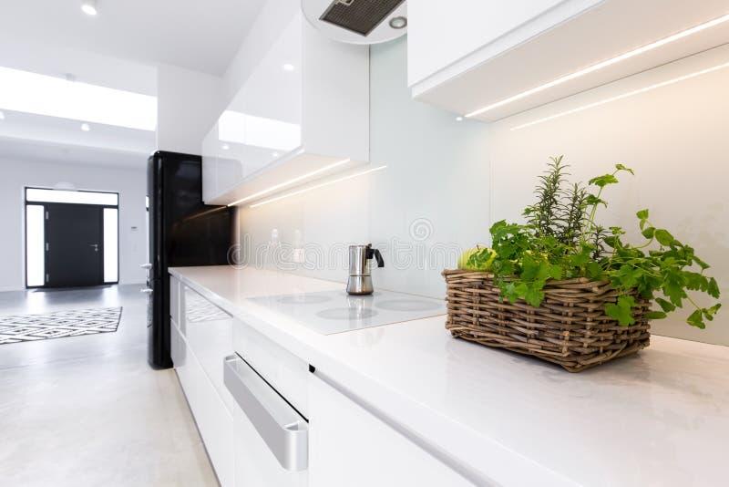 Ziele w kuchni fotografia stock