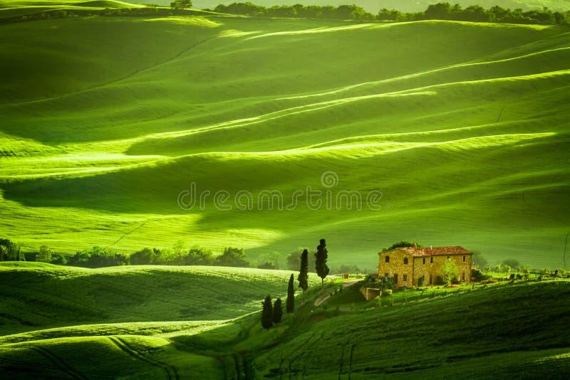 Zieleni łąki z agrotourism i pola zdjęcie stock