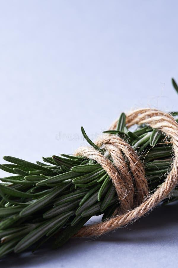 Zieleni świezi rozmaryny i arkana zdjęcie stock