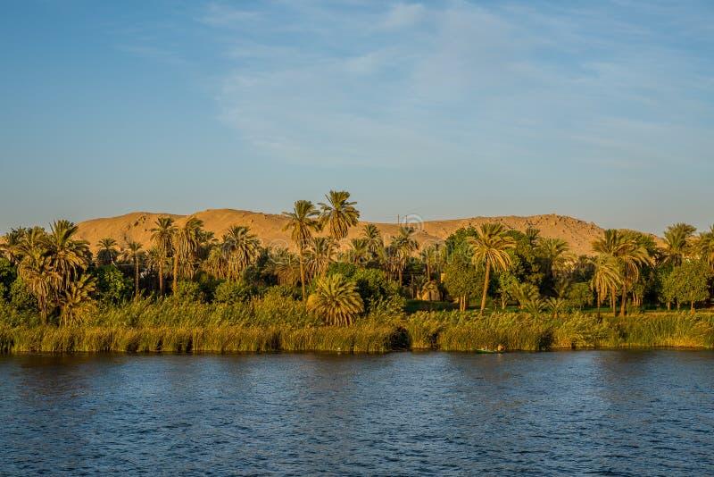 Zieleni banki rzeczny Nilde i pustynia za obrazy royalty free