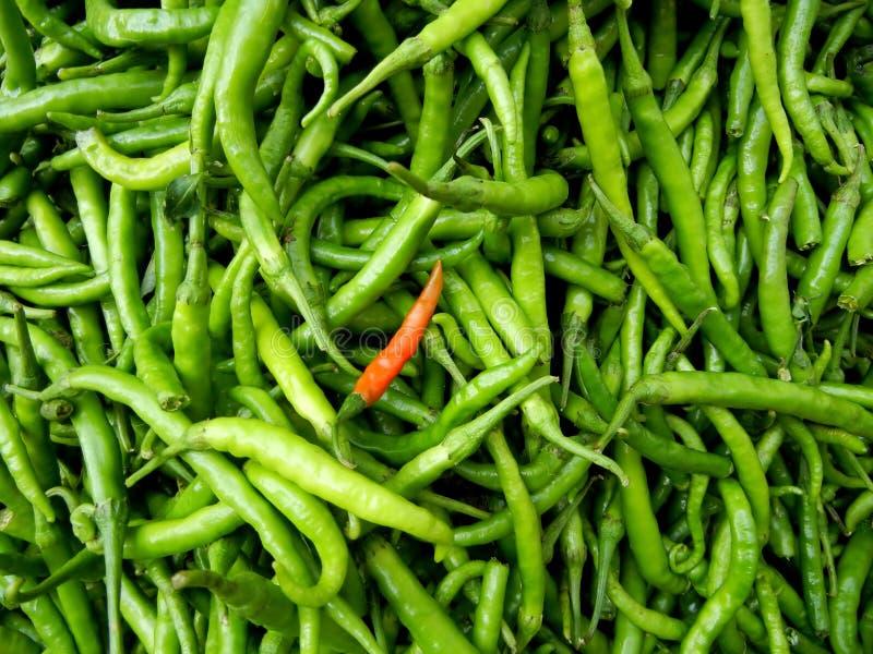 zieleni chili pieprze obraz royalty free