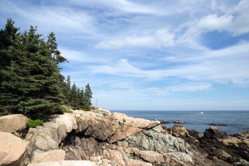 Zieleni Drzewa Blisko Brown Falezy Z Przeglądem Morze I Bezpłatna Domena Publiczna Cc0 Obraz