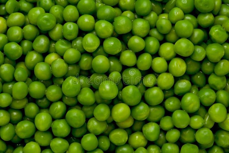 zieleni grochy zdjęcia royalty free