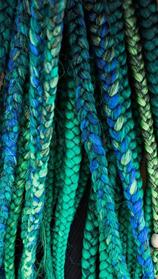 Zieleni i błękita warkocze Włosiani zdjęcia stock