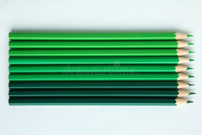 zieleni ołówki obraz royalty free