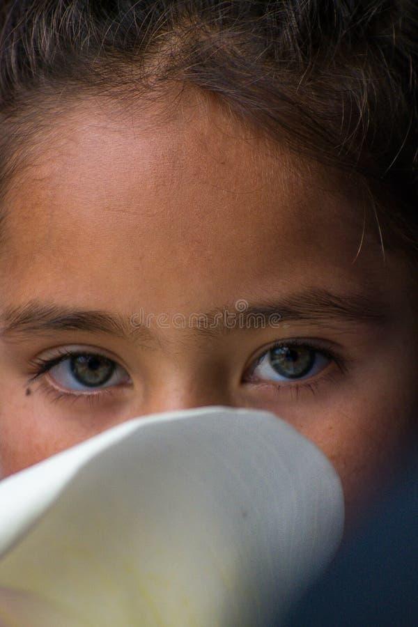 Zieleni oczy i kwiatu Boyaca Kolumbijska dziewczyna zdjęcia stock