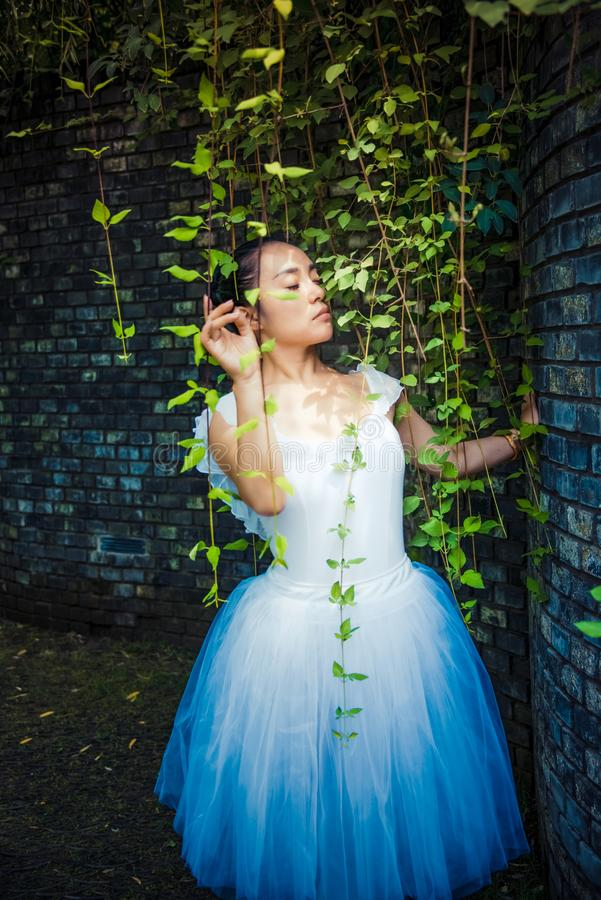 Zieleni winogrady i baletniczy tancerze w lecie obrazy stock