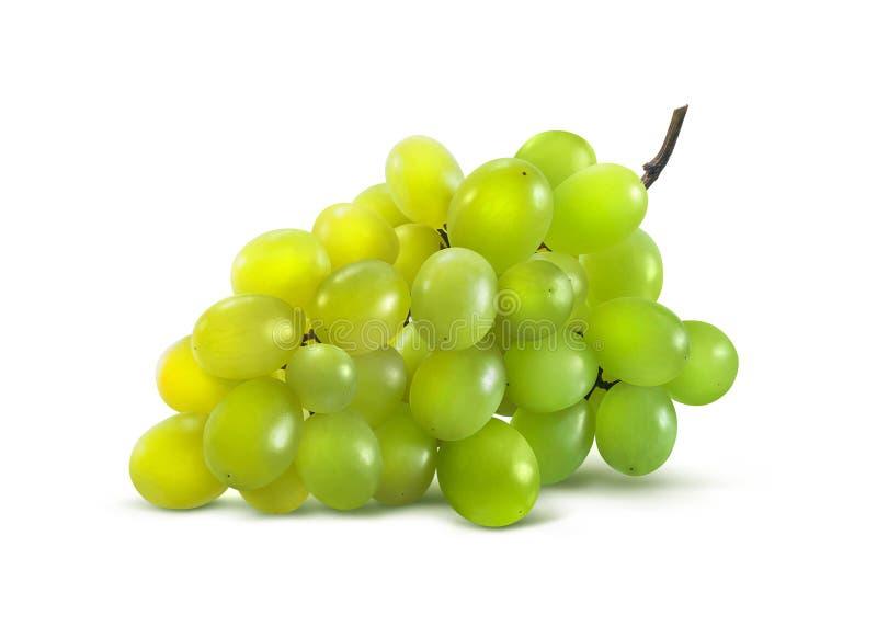 Zieleni winogrona horyzontalni żadny liść odizolowywający na białym tle fotografia royalty free