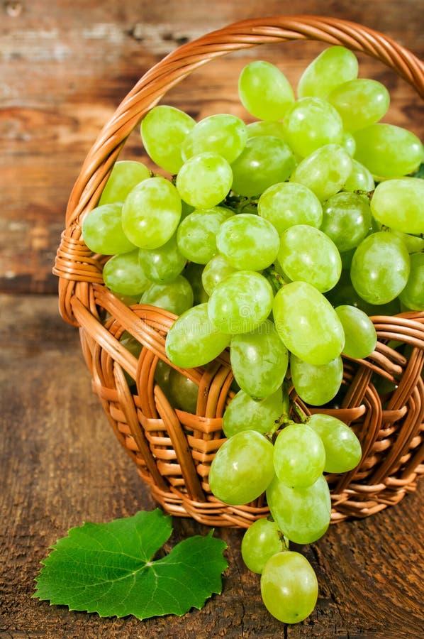 Zieleni winogrona w łozinowego kosza zakończeniu obraz stock