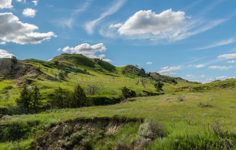 Zieleni wzgórza Na prerii obraz royalty free