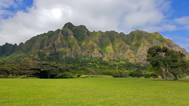 Zielenie Dowietrzny park na Oahu, Hawaje obraz royalty free