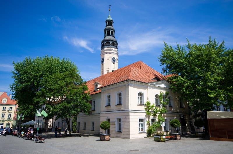 Zielona古拉-波兰的城镇厅 免版税图库摄影