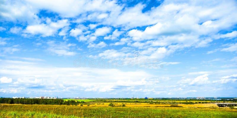 Zielona łąka i drzewo krajobraz w natura parku, piękny lato sezon zdjęcie royalty free