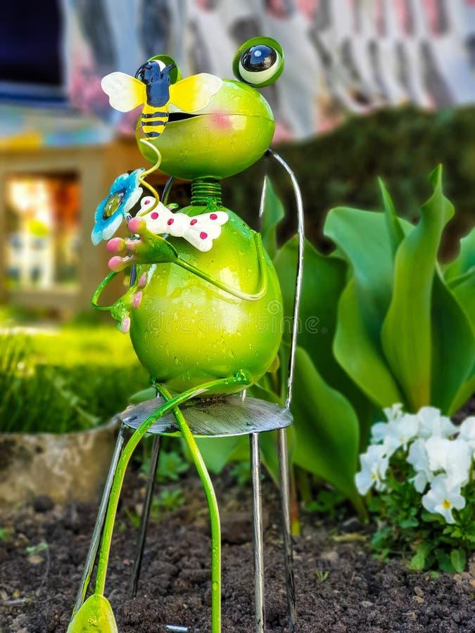zielona żaba w ogródzie fotografia royalty free