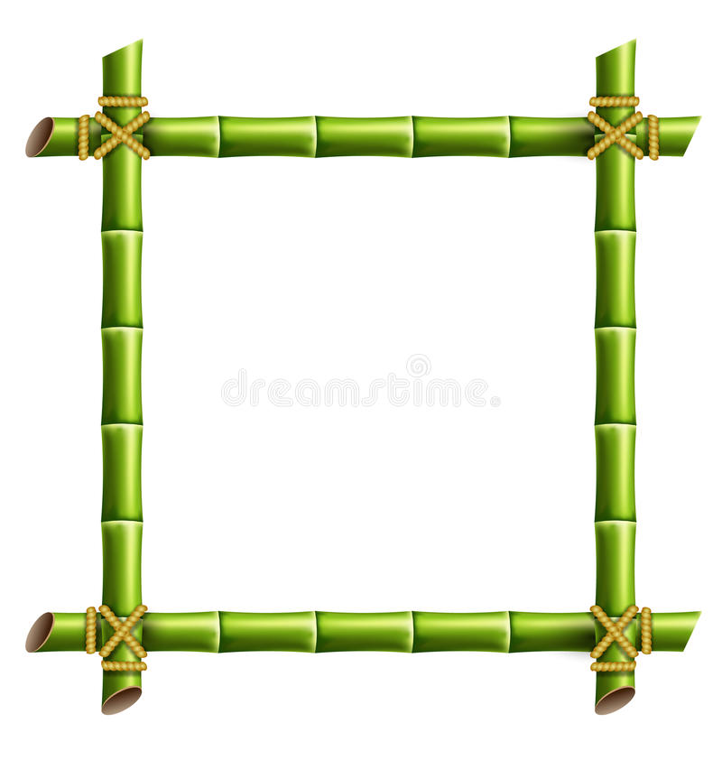 Zielona bambus rama odizolowywająca na bielu ilustracja wektor