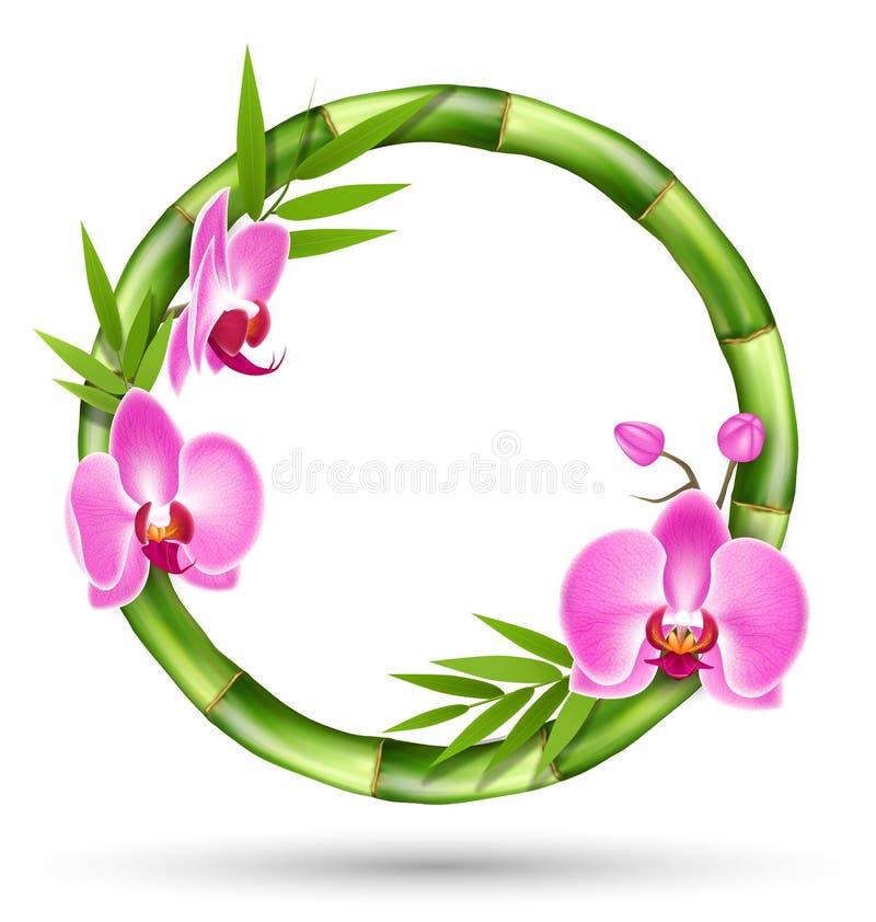 Zielona Bambusowa okrąg rama z Różową orchideą Kwitnie na W ilustracja wektor