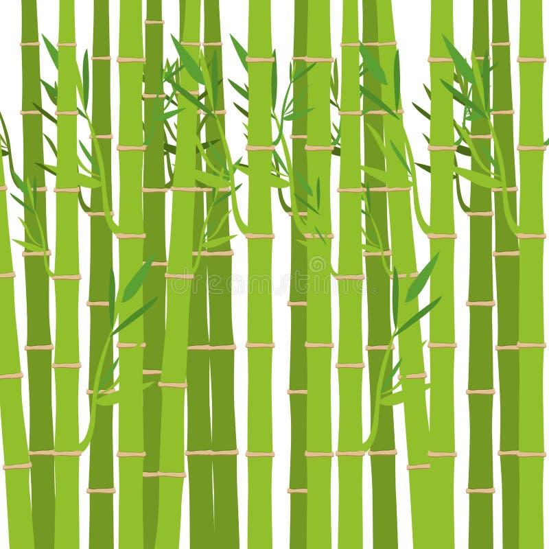 Zielona bambusowa roślina ilustracji