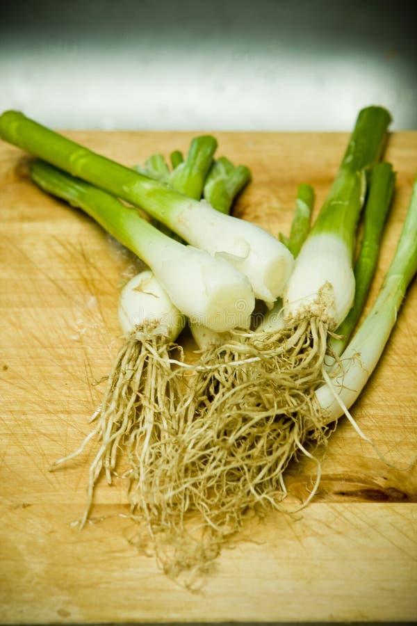 zielona cebuli fotografia stock