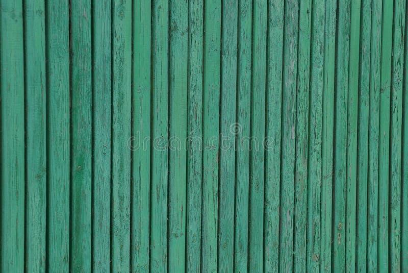 Zielona drewniana tekstura cienkie deski w izoluje ogrodzenie obrazy royalty free