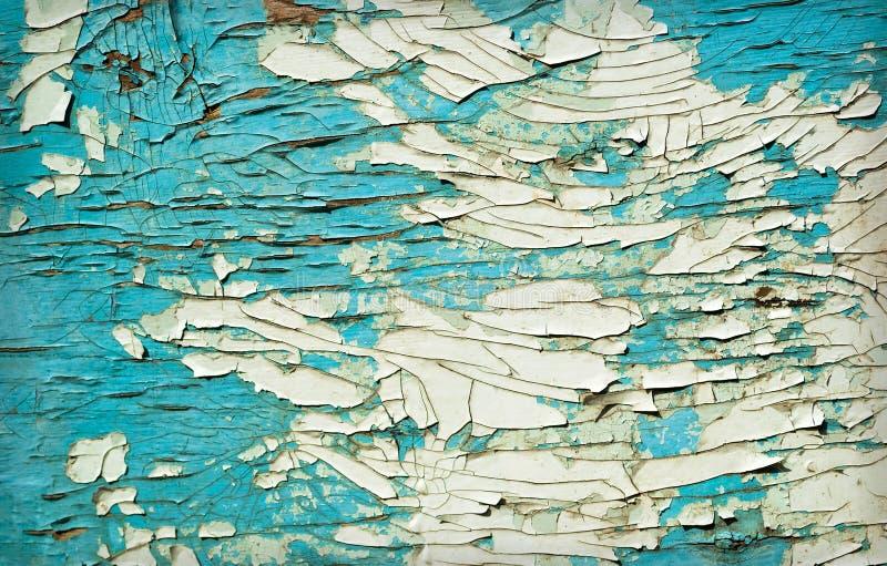 Zielona drewniana tekstura jako tło fotografia royalty free