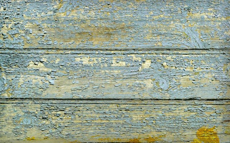 Zielona drewniana tekstura jako tło obraz stock