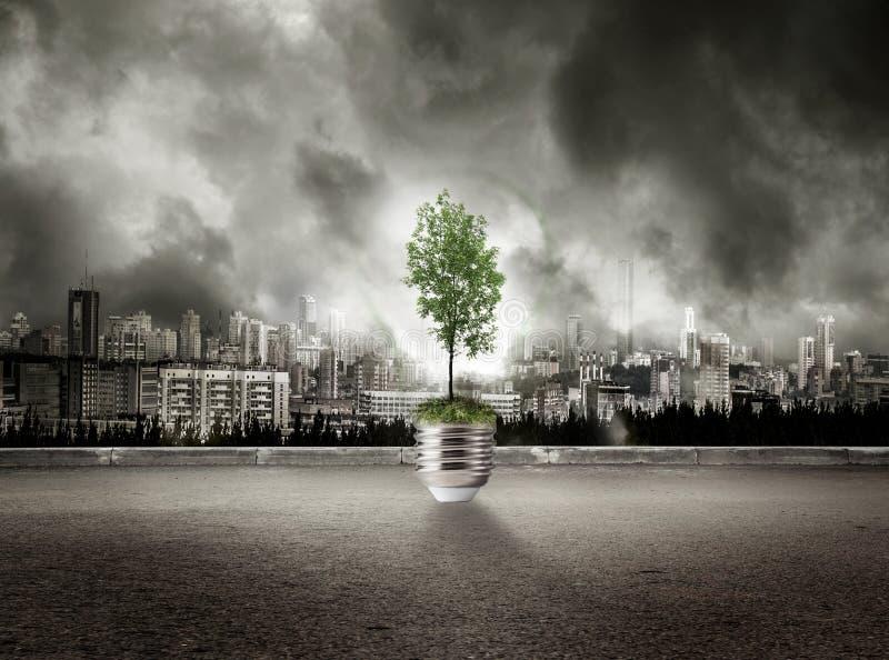 Zielona drzewna lampa na widoku miasto w burzowym niebie fotografia stock