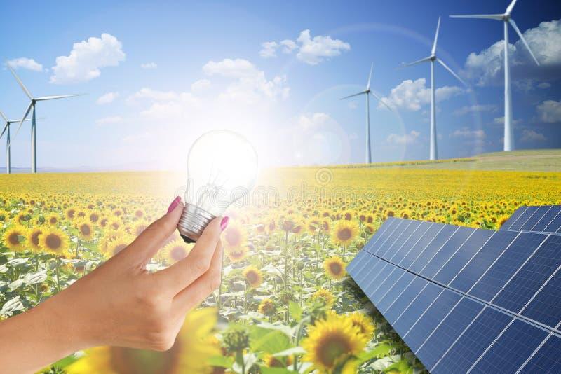 Zielona energia jest przyszłością z kobiety mienia żarówką przeciw odnawialnemu tłu zdjęcia stock